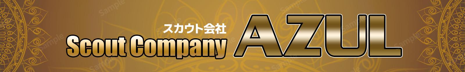 新宿渋谷池袋スカウト会社AZUL|バイト求人